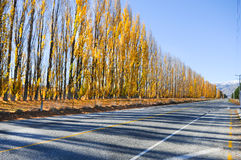 Empty road leading through scenic countryside, New Zealand Stock Photos