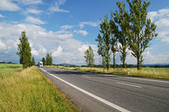 An empty road lined with poplar alley, coming from afar white truck Royalty Free Stock Image