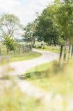 Empty road lingering through swedish landscape Stock Photo