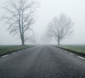 Empty road at morning autumn day Royalty Free Stock Photo