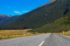 An empty road of New Zealand. Stock Images