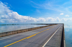 Empty road over Wetlands in the world. Royalty Free Stock Photo