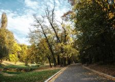 Road through park in autumn stock photography