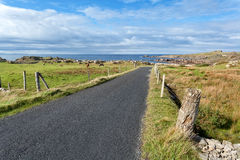 Empty road running through Donegal coast Royalty Free Stock Image