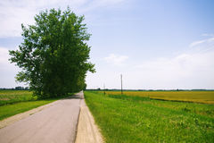 Empty road at rural landscape Royalty Free Stock Images