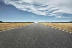 Empty road with savannah view. At sunny day stock photography