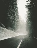Empty road through snowy forest Royalty Free Stock Image