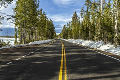 Empty road inside Yellowstone royalty free stock images