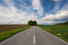 Empty road between summer field at sunset Royalty Free Stock Photography