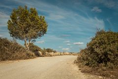 Empty road in sunlight blue sky destination Stock Photo