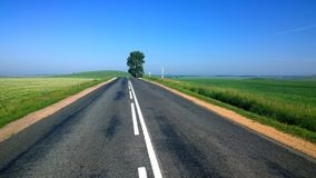 Empty Road Surrounded by Green Grass during Daytime Royalty Free Stock Image