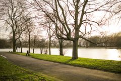 Empty Road With Trees at the Side Near Lake during Daytime Royalty Free Stock Photography