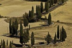 An empty road in Tuscany, Italy Royalty Free Stock Photos