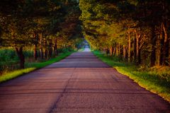 Empty road. Which is a part of Green Velo bike trail on Podlasie in Poland Royalty Free Stock Photo