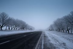 Empty road in the winter, ground and trees covered snow. Empty road in the winter, ground and trees covered snow Royalty Free Stock Image