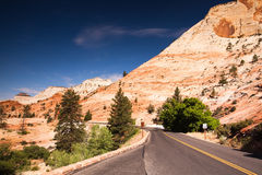 Empty road in Zion NP Royalty Free Stock Images