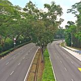 Empty roads lined with trees in Singapore Stock Image