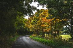 Empty roadway among autumnal trees. Mysterious empty paved road running away with curl among lush trees with colorful autumnal foliage, Oxford, United Kingdom royalty free stock image