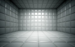Empty room in the funny farm Royalty Free Stock Photography