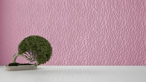 Empty room interior design, pink decorated molded panel, wooden white floor and potted plant, modern architecture background with. Copy space, zen template stock illustration