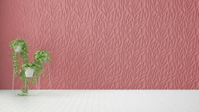 Empty room interior design, red decorated molded panel, wooden white floor and potted plant, modern architecture background with. Copy space, template mockup vector illustration