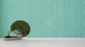 Empty room interior design, turquoise decorated molded panel, wooden white floor and potted plant, modern architecture background. With copy space, zen template royalty free stock images