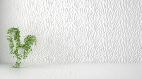 Empty room interior design, white decorated molded panel, wooden blank floor and potted plant, modern architecture background with. Copy space, template mockup stock illustration