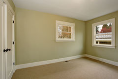 Empty room interior with green walls and carpet floor. Stock Photography