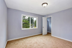 Empty room interior with lavender walls and beige carpet. Stock Photography
