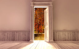 Empty room with opened door Royalty Free Stock Photos