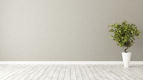 Empty room with plant and brown wall stock image