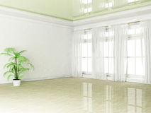 Empty room with a plant and a window Royalty Free Stock Photography