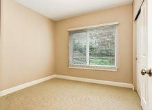 Empty room with soft peach walls , carpet floor and window. Stock Photos