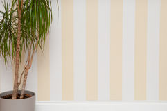 Empty room with striped wall Royalty Free Stock Images