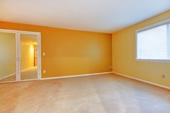 Empty room with yellow golden walls and mirror. Royalty Free Stock Image