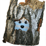 Empty rotten tree stump and a toy. Royalty Free Stock Photos