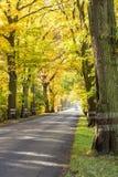 Empty route - autumn time. Royalty Free Stock Photo