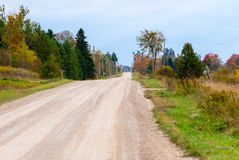 Empty rural country dirt road and shrubs Royalty Free Stock Photo