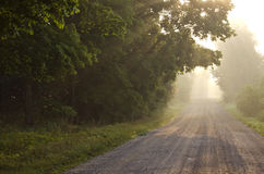 Empty rural gravel road and autumn morning mist Stock Photography