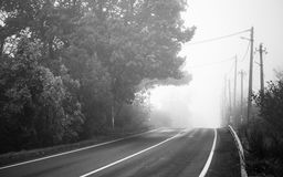 Empty rural highway in foggy morning. Empty rural highway in autumn foggy morning, black and white retro stylized photo stock photos