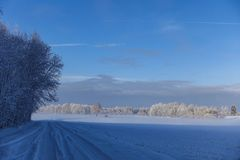 Empty rural road along the edge of the forest in winter stock photography