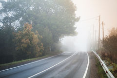 Empty rural road in autumn foggy morning Royalty Free Stock Photo