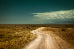 Empty rural road going through prairie under cloud Stock Images