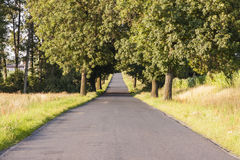 Empty rural straight asphalt route. Royalty Free Stock Photography