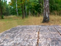 Empty rustic table in front of countryside background. Empty space of green forest. Wood table top in front of of trees in the for. Est. Product display and royalty free stock photos