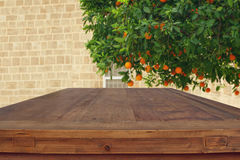 Empty rustic table in front of countryside orange tree background Stock Photography