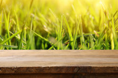 Empty rustic table in front of fresh grass Royalty Free Stock Photos