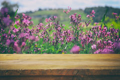 Empty rustic table in front of spring beautiful field flowers Royalty Free Stock Photos