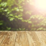 Empty rustic wood table top on blurred parsley  background in th Royalty Free Stock Photography