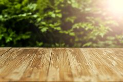 Empty rustic wood table top on blurred parsley  background in th Stock Photography